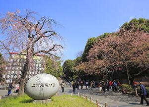東京・上野公園