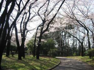 北区中央公園(王子 十条)